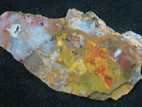 Rainbow Ridge Agate Slab